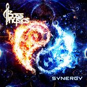 Synergy by Bass Physics