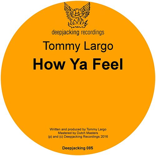 How Ya Feel by Tommy Largo