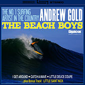 The Beach Boys by Andrew Gold