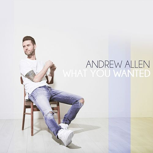 What You Wanted by Andrew Allen