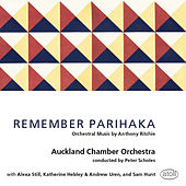 Remember Parihaka by Various Artists