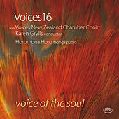 Voice of the Soul by Various Artists