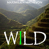 Wild by Maximilien Mathevon