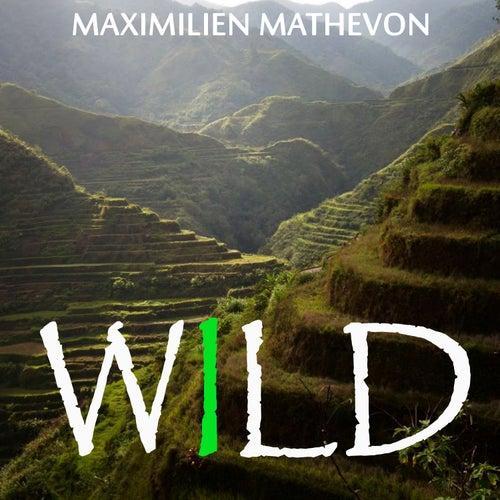 Wild by Maximilien Mathevon