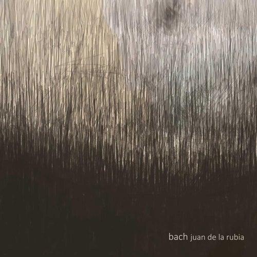 Bach by Juan de la Rubia