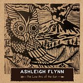 The Low Arc of the Sun by Ashleigh Flynn