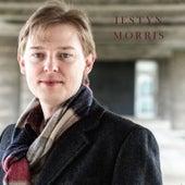 Iestyn Morris by Iestyn Morris