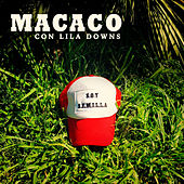 Semillas by Macaco