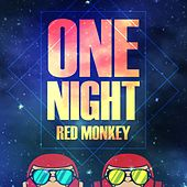 One Night by Red Monkey