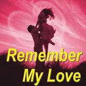 Remember My Love von Various Artists