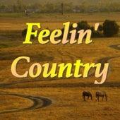 Feelin' Country von Various Artists