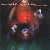 Dream Garden by Adam Rudolph