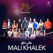 Mali Khalek by Kadim Al Sahir