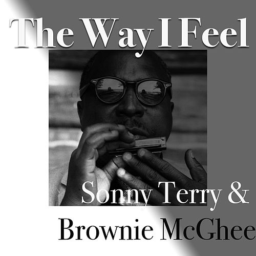 The Way I Feel von Sonny Terry