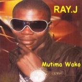 Mutima Wako by Ray J