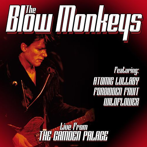 Live From London by The Blow Monkeys