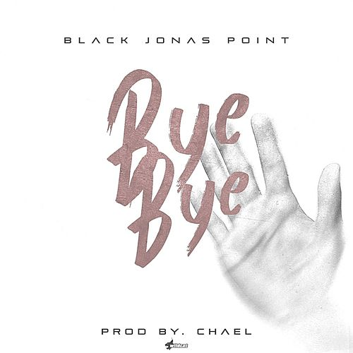 Bye Bye by Black Jonas Point