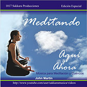 Meditando Aquí y Ahora by John Martin