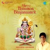 Shree Hanuman Bhajanaamrit by Dinesh Kumar Dube