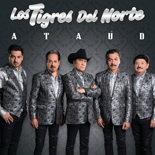 Ataúd by Los Tigres del Norte