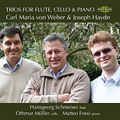 Weber & Haydn: Trios for Flute, Cello & Piano by Matteo Fossi