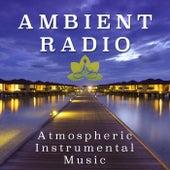 Ambient Radio - Atmospheric Instrumental Music by Various Artists