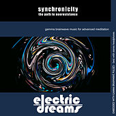 Synchronicity: The Path to Nonresistance by Electric Dreams