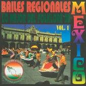 Bailes Regionales Volumen 1 (Lo Mejor Del Folklore De Mexico) by Mariachi Aguila Real