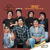 Ayer (Volumen Dos) by Los Acuario De Mexico