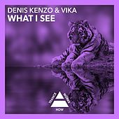 What I See by Denis Kenzo