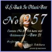 Cantata No. 21, 'Ich hatte viel Bekummernis' - BWV 21 by Shinji Ishihara