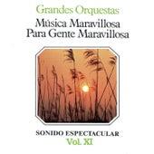 Música Maravillosa para Gente Maravillosa Grandes Orquestas Vol. XI by Various Artists