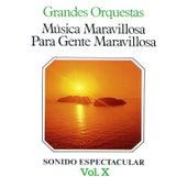 Música Maravillosa para Gente Maravillosa Grandes Orquestas Vol. X by Various Artists
