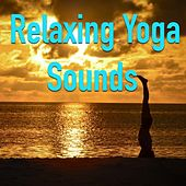 Relaxing Yoga Sounds von Various Artists