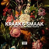 All I Want Is You (feat. Keyhole) - Single by Kraak & Smaak