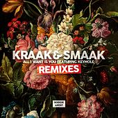 All I Want Is You (feat. Keyhole) [Remixes] - EP by Kraak & Smaak