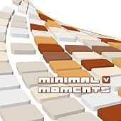 Minimal Moments V by Various Artists