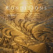 Conditions, Vol. 6 by Various Artists