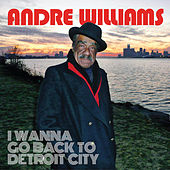 I Wanna Go Back To Detroit City by Andre Williams