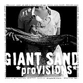Provisions by Giant Sand