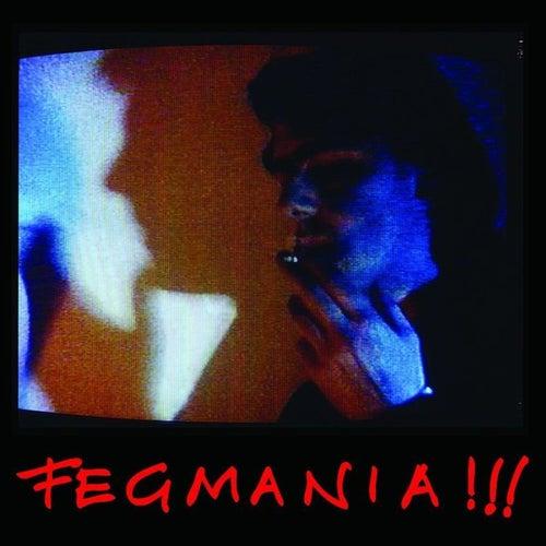 Fegmania! by Robyn Hitchcock