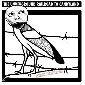 Bird Roughs by The Underground Railroad To Candyland