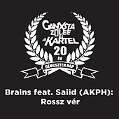 Rossz Vér (20 év - Ganxta Zolee És A Kartel Tribute) by The Brains