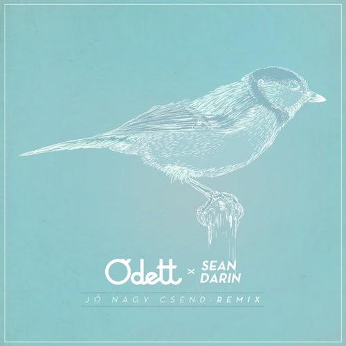 Jó Nagy Csend (Sean Darin Remix) by O'dett