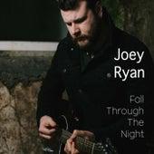 Fall Through the Night by Joey Ryan