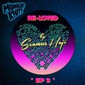 Re-Loved 3 by Seamus Haji