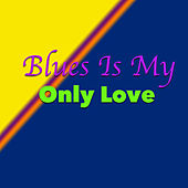 Blues Is My Only Love von Various Artists