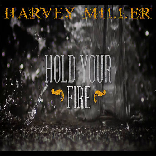 Hold Your Fire by Harvey Miller