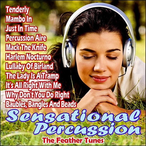 Sensational Percussion by The Feather Tunes