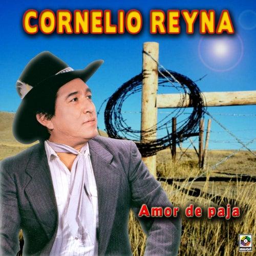 Amor De Paja by Cornelio Reyna